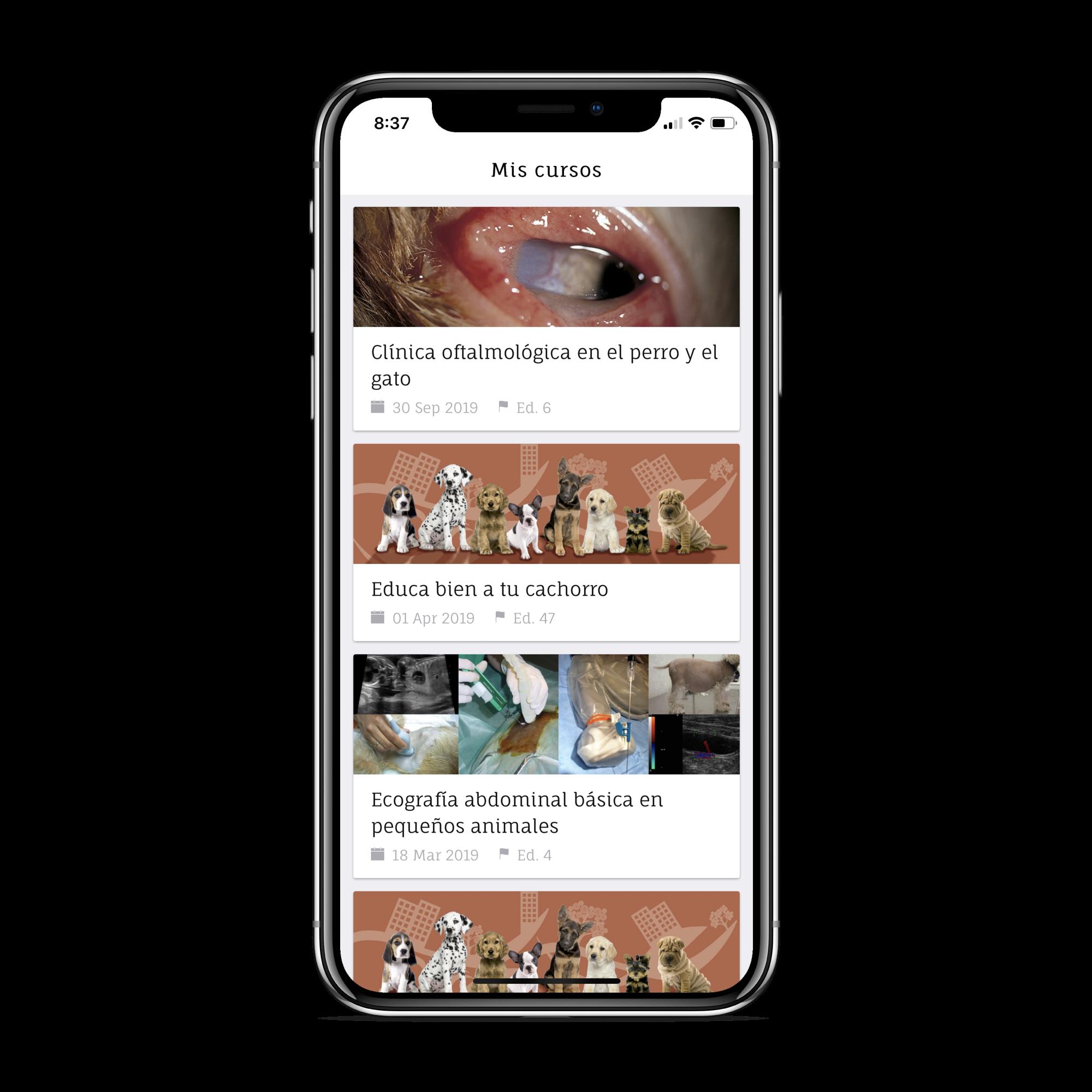 App Cursos Online – Quadam Mobile